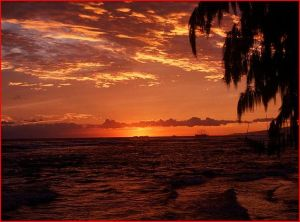 Sunset 111